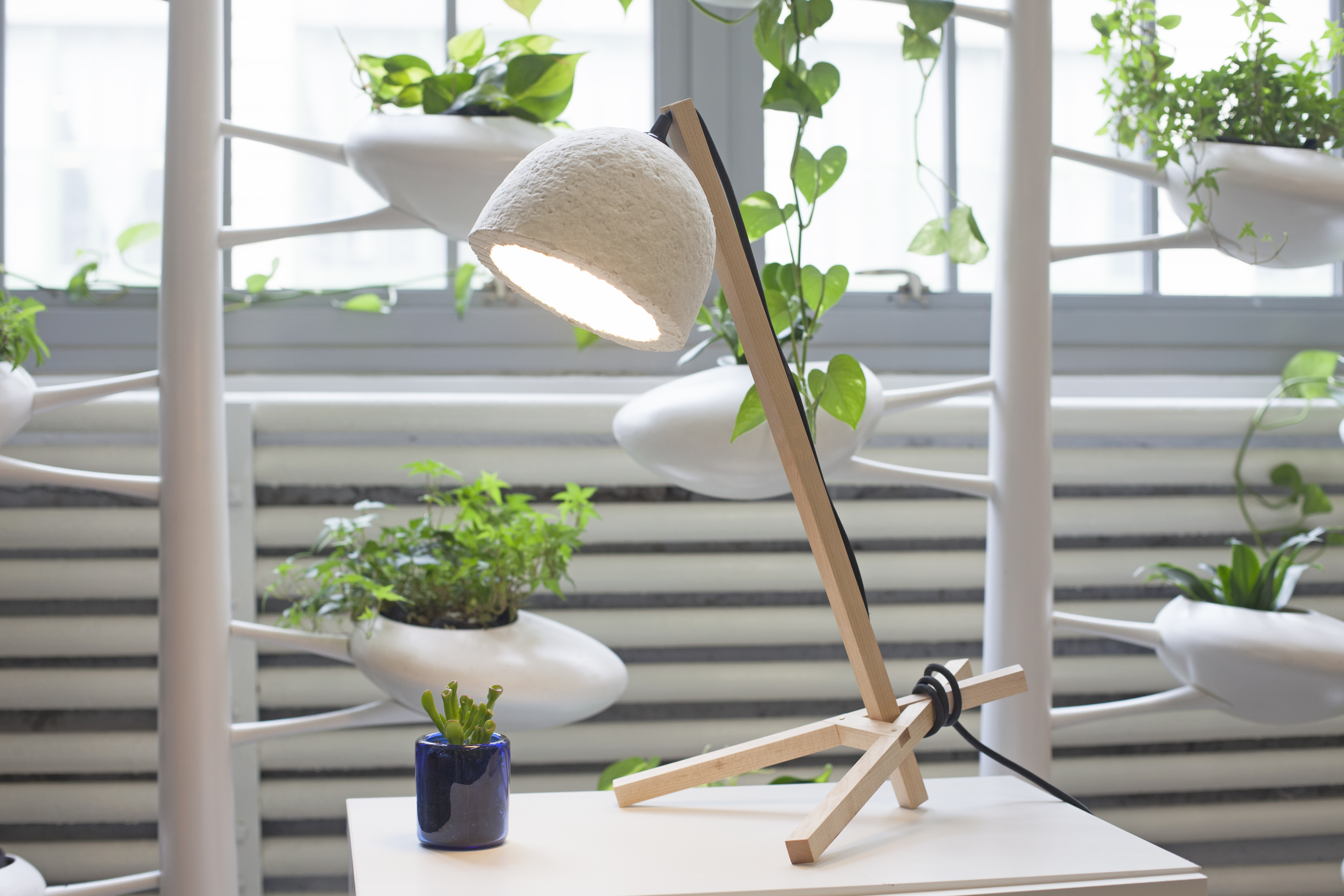 ecovative design collaborating with danielle trofe design to