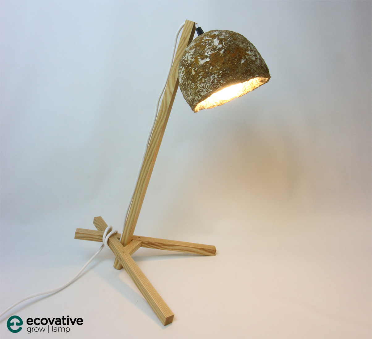 Dark Table Lamp with grown experimental coloration